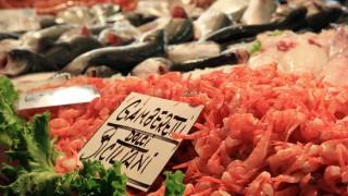 Der Fischmarkt La Pescheria in Venedig