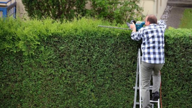 Der Blick über den Zaun: Nachbarschaftsstreit im Sommer