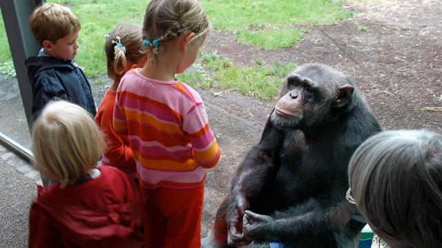 Besucher im Tierpark