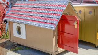 Gregory Kloehns Homeless Homes Projekt Panorama Suddeutsche De