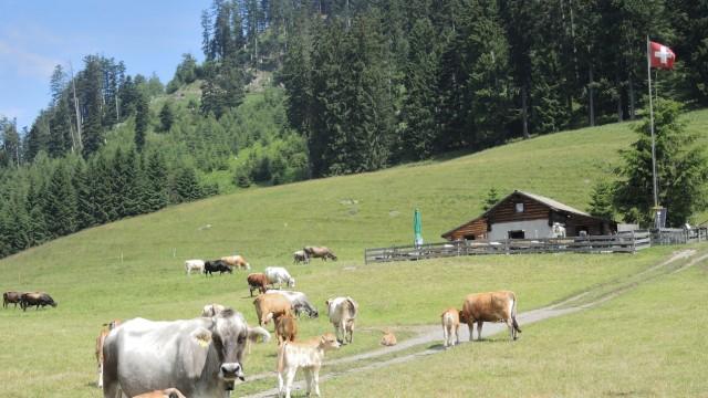 Heidiland - Schweiz vermarktet Heidi-Mythos