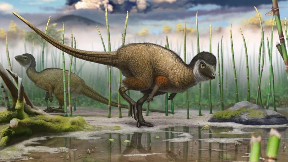 Dinosaurier Paläontologie