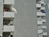 Wohnanlage der GBW in München, 2012