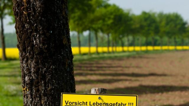 Ebersberg Fuchsbandwurm