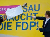 Landtagswahl Brandenburg - FDP