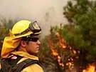 Kampf gegen das Feuer (Bild)