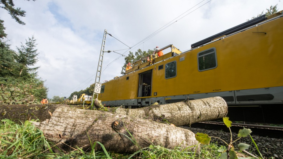 ICE kracht gegen Baum