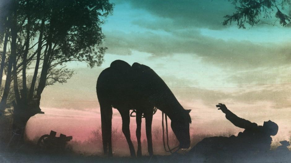 Deutsche Postkarte aus Erster Weltkrieg: Sterbender Soldat und Pferd