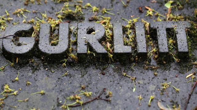 Familie Gurlitt plant Dauerausstellung in deutschem Museum