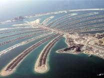Palme vor Dubai, AP