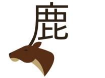 Reisebuch Bildband Chineasy, Chinesische Schriftzeichen, China