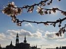 Frühling in Deutschland (Bild)