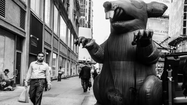 Biologie Ratten in Big Apple