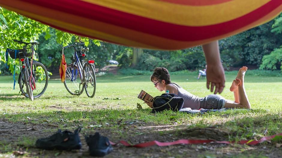 Lesen in der Sonne