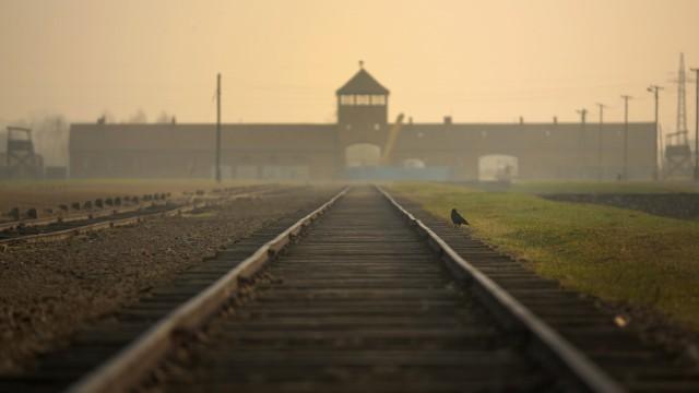 Schienen nach Auschwitz-Birkenau