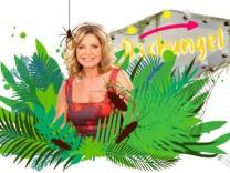 Dschungelcamp, RTL, Maren Gilzer