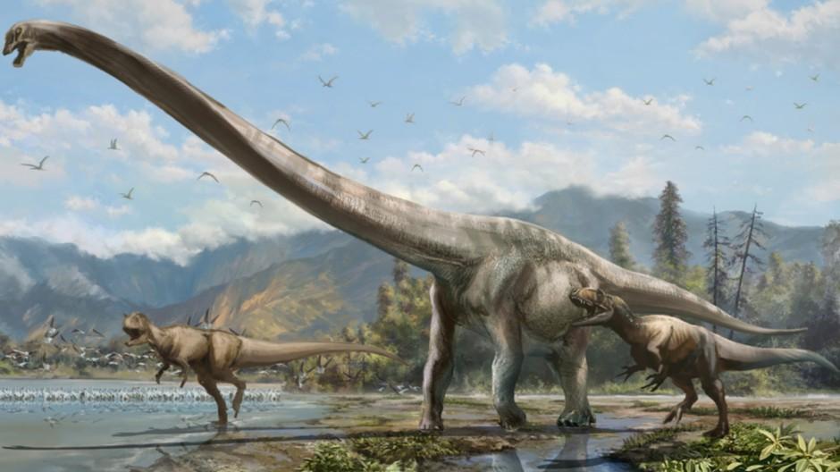 Bildergebnis für dinosaurier images