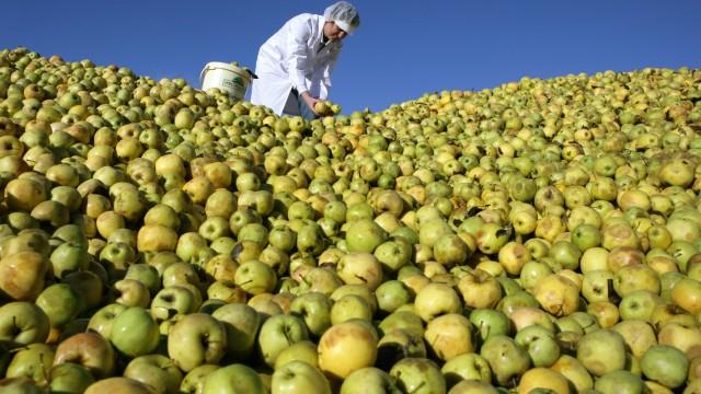 Apfelmus aus dem Spreewald