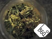 Cannabis sativa indica buds of marihuana hemp ganja plant CTKxPhoto LiborxSojka CTKPhotoOF201