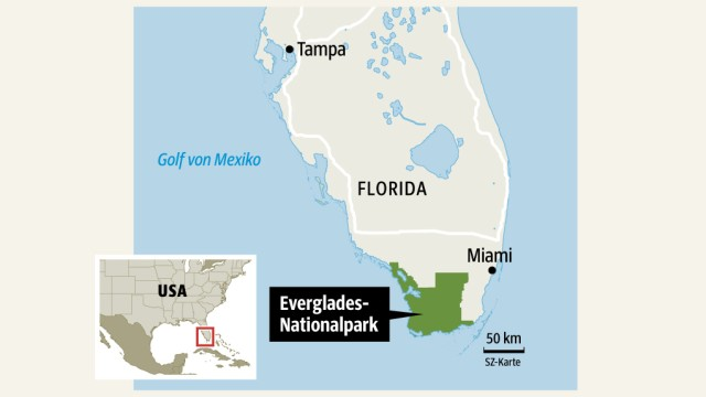 USA Everglades in Florida