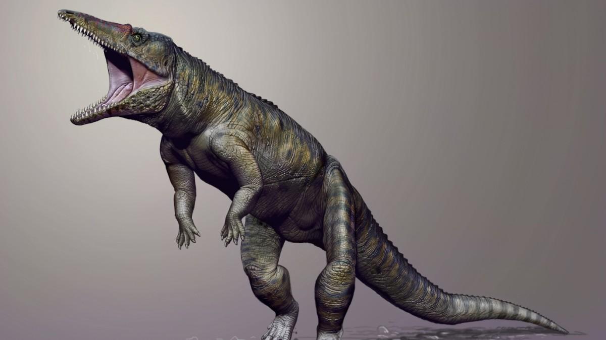 Tyranno-Krokodilus Rex