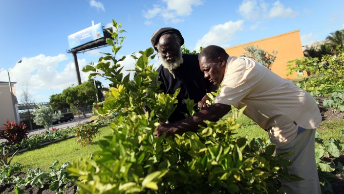 Residents Turn Run Down Miami Block Into Community Garden