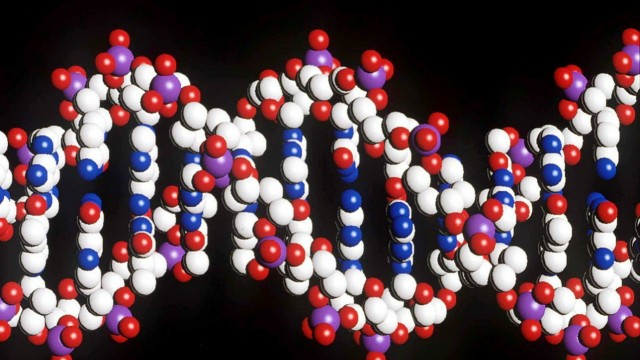 Menschlicher DNA-Strang