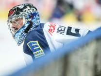 Adler Mannheim v ERC Ingolstadt - DEL Play-offs Final Game 1
