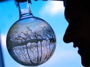 Katalyseforschung, Foto: dpa