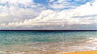 Antigua Für jeden Tag einen Strand