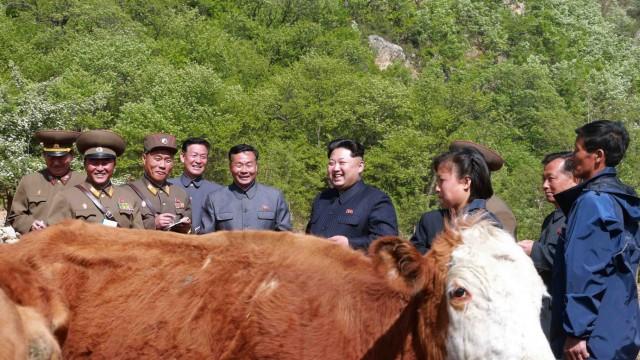Nordkorea Kurzfristige Absage an den Kreml