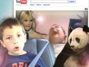 YouTube-Stars