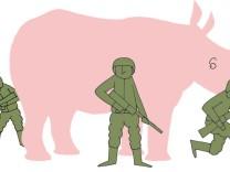 Hacke: Nashorn