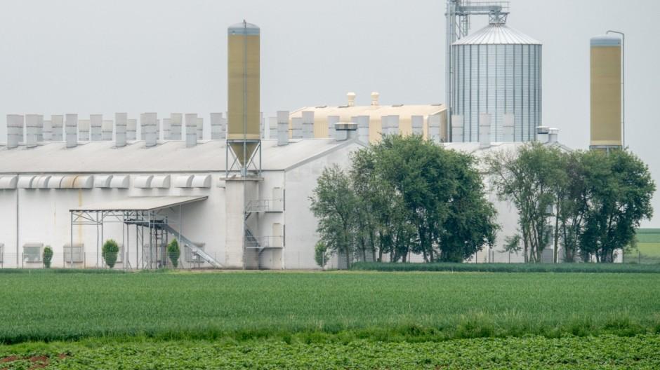 Eier aus Bayern könnten Salmonellen-Ausbruch verursacht haben