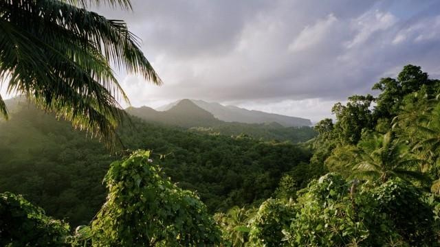 Typical landscape Dominica Windward Islands Lesser Antilles Caribbean PUBLICATIONxINxGERxSUIxAUT