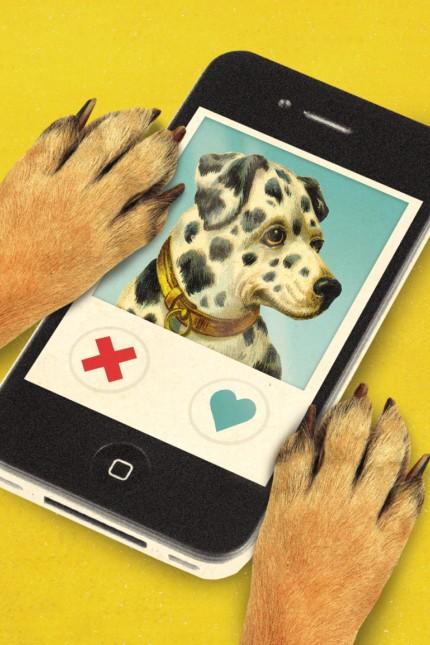'Tindog' – die neue Dating-App für Hund und Herrchen