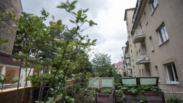 Käfer Urban Garden