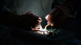 Behandlungsfehler-Statistik - Operation