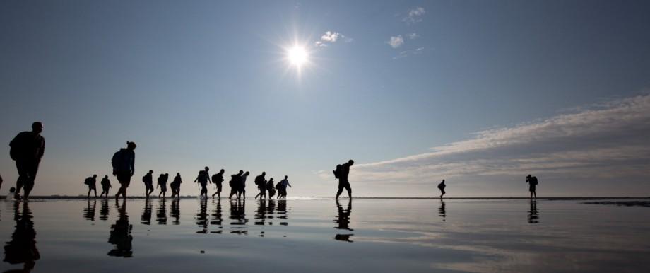 Spaziergänger auf einer Wattwanderung an der Nordsee