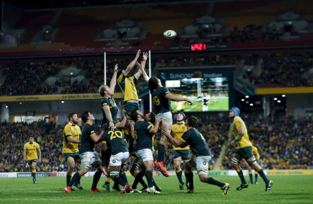 Australia's Wallabies flanker Scott Fardy reaches for a line out ball against South Africa's Springboks during their Rugby International match in Brisbane
