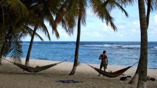 Zwischen Palmen und Pelikanen: Urlaub auf den Französischen Antillen
