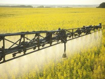 Crop Spraying in Canola Field