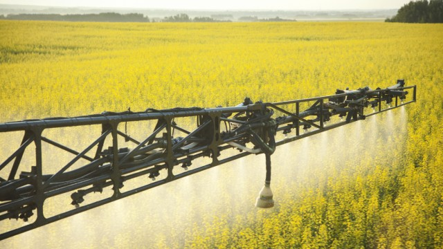 Crop Spraying in Canola Field