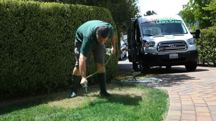 California Company Offers Lawn Painting Service To Turn Drought-Stricken Dead Lawns GreenBill Schaffer, Rasenanmaler in Kalifornien, Foto: privat