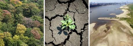 Klimawandel Trockenheit in Europa