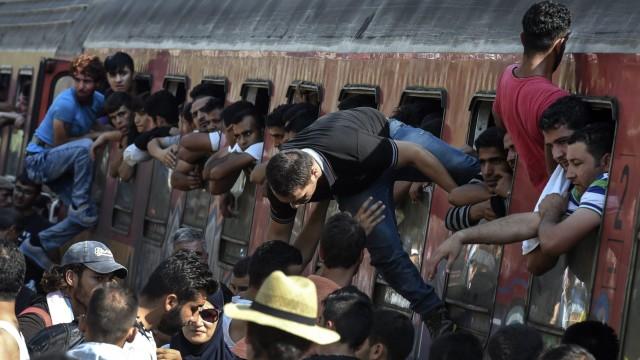 Migrants crossing Macedonia on their way to western European coun