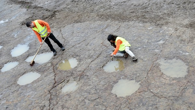Fußabdrücke von Langhalsdinosauriern
