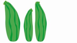 Gesundheit Giftige Bitterstoffe in Gemüse