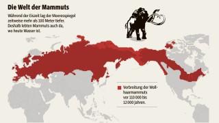 Palaontologie Wo Die Mammuts Wohnten Wissen Suddeutsche De