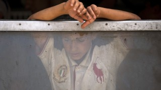A migrant boy looks through a train window after crossing the Macedonian-Greek border near Gevgelija